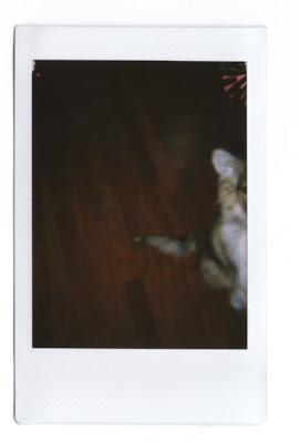 Jan.17, 2011
