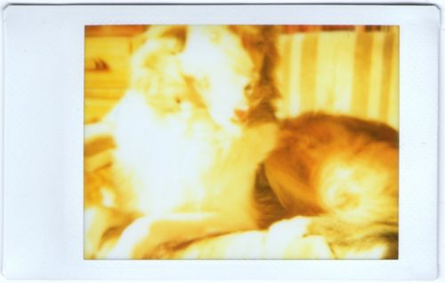 InstaxMini001-Dru_March2012_2